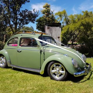 Wedding Cars - I Do Car Hire - Vintage Car hire Tauranga - Beautiful Garden Setting